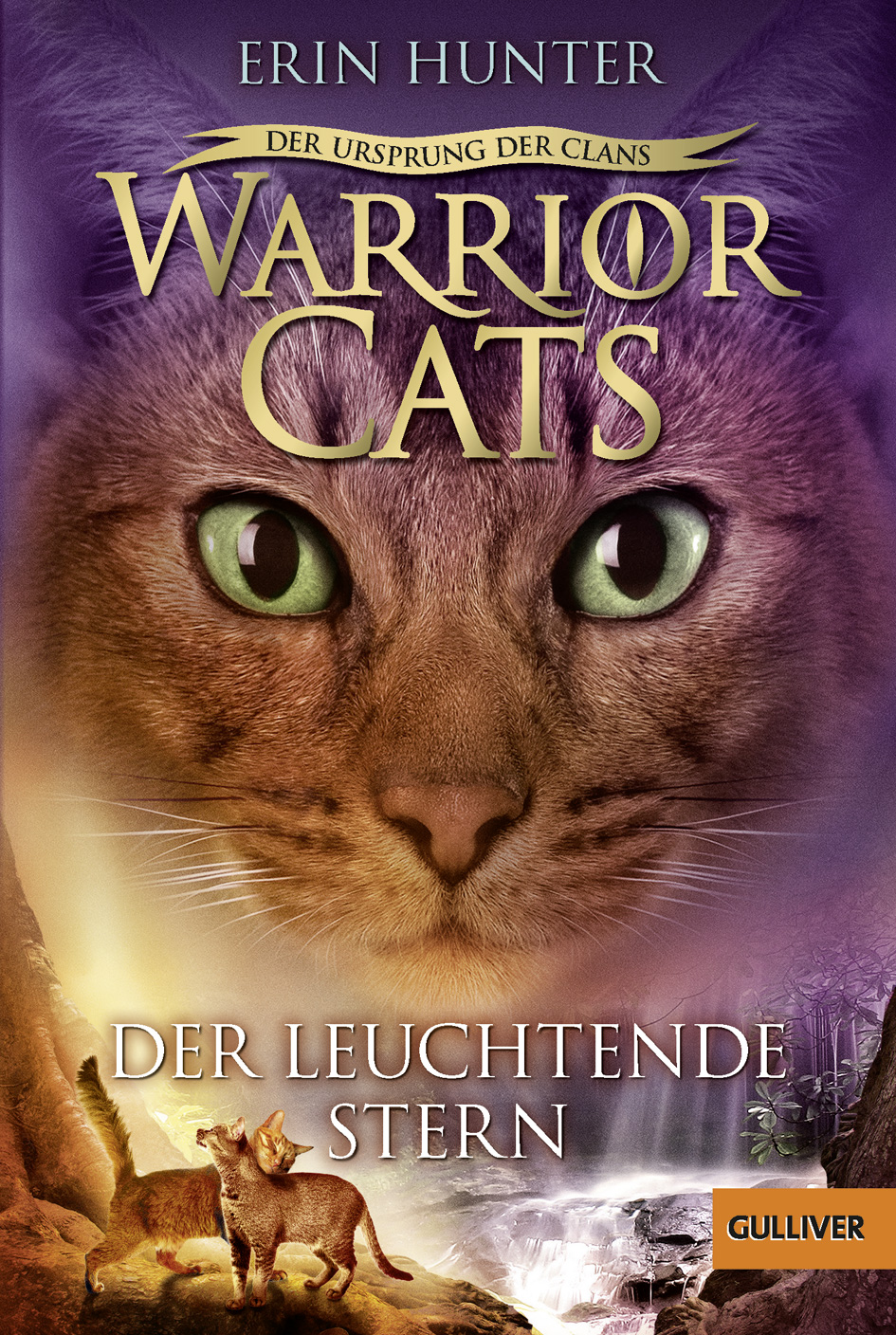 Download Warrior Cats Pdf A Vision Of Shadows