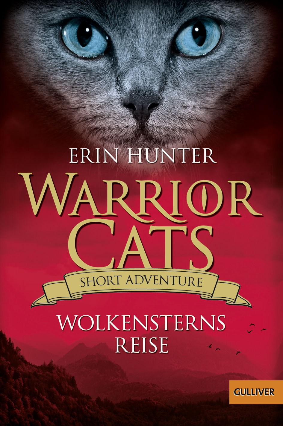 Warrior Cats Vision Of Shadows Book
