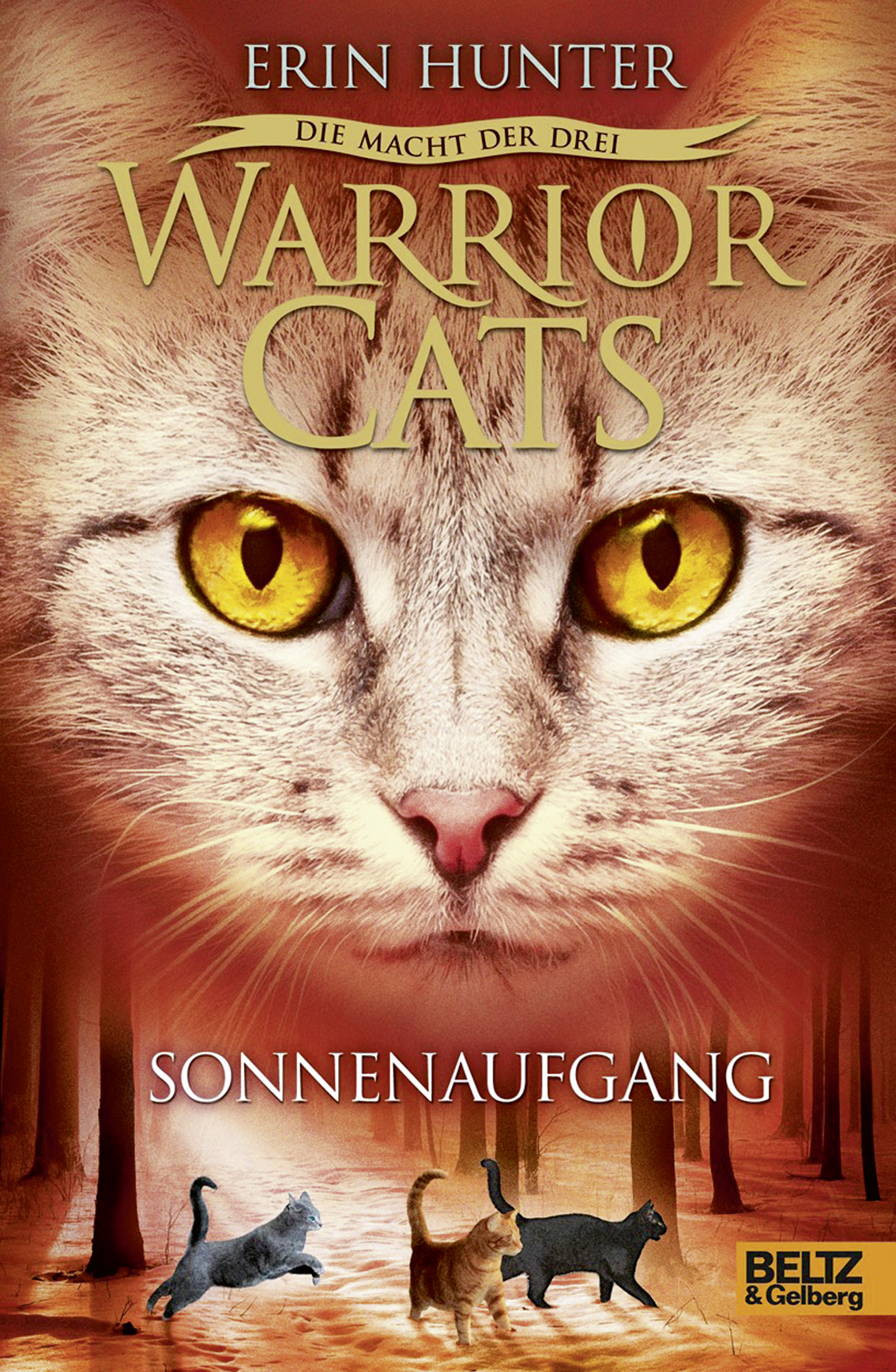 Warrion Cats Band
