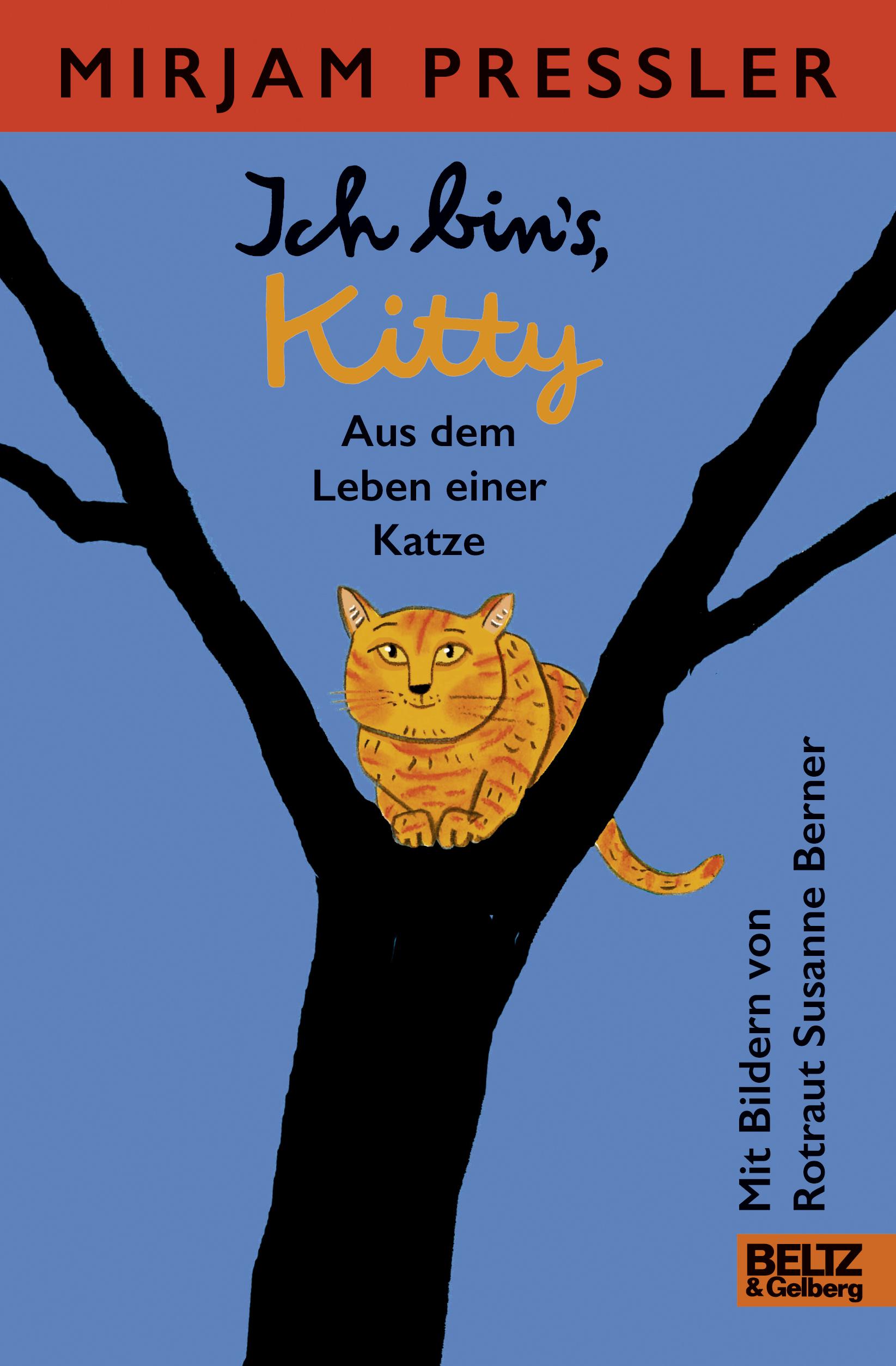 Ich Bin S Kitty Aus Dem Leben Einer Katze Roman Mirjam